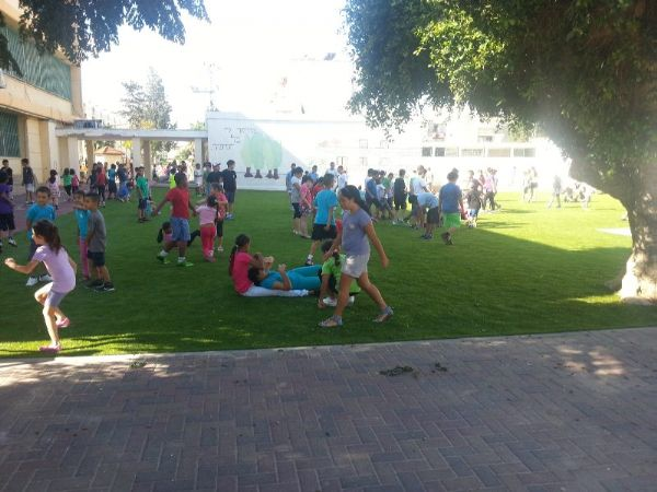שילוב דשא סינטטי במגרשי ספורט