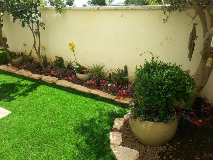 סוגי דשא סיננטי