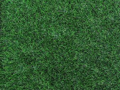 דשא סינטטי מסוג balnas