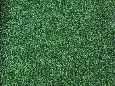 דשא סינטטי מסוג green
