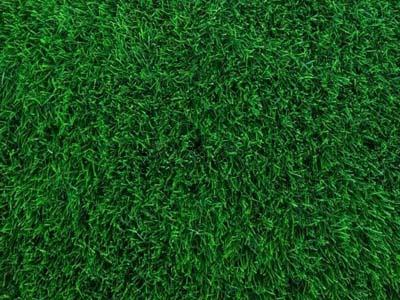 דשא סינטטי רך - soft