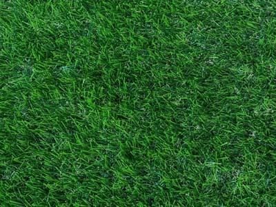 דשא סינטטי מסוג spring