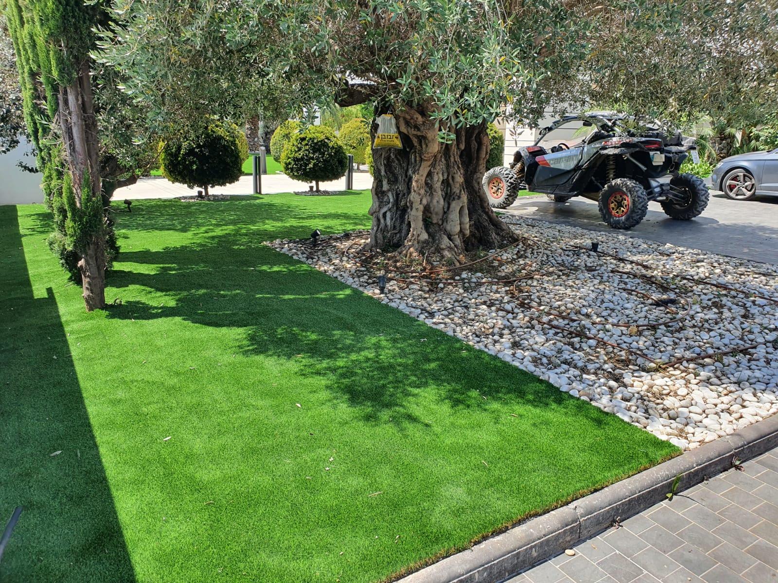 עיצוב גינה ודשא בבית האח הגדול 2020 1